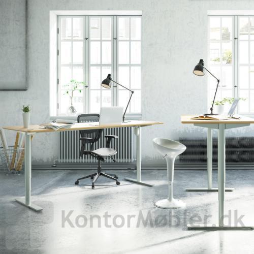 Conset 501-49 hæve sænke bord med finér bordplade og hvidt stel