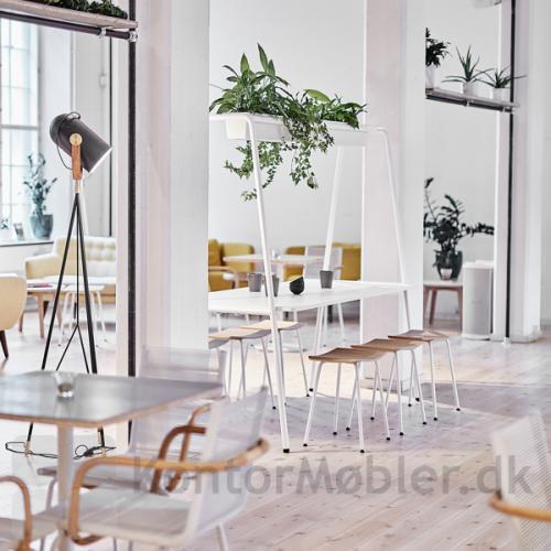Four Real A miljøbord med hvid bordplade og hvide ben