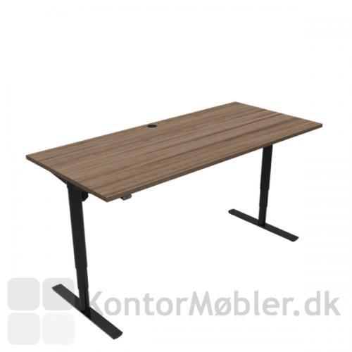 Conset 501-49 hæve sænke bord med bordplade størrelsen 180x80 cm