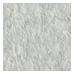 Silver (0810710)