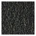 Antracite (0845785)