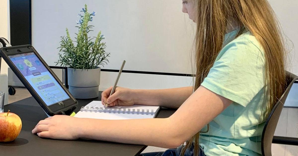 5 simple tips: Sådan gør du hjemmeundervisningen mere udbytterig