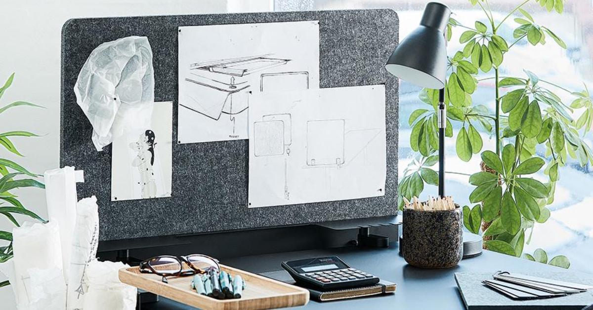 5 gode grunde til at du bør have planter på kontoret