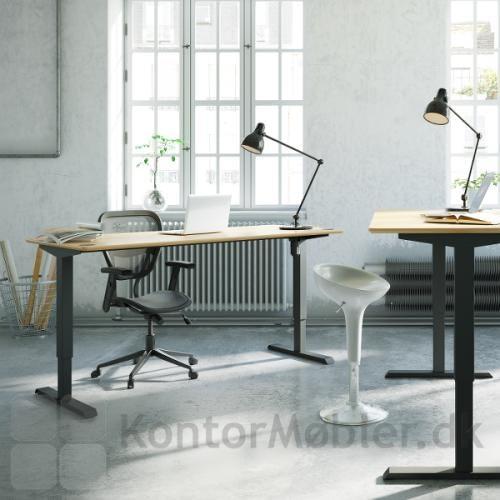 Conset 501-33 hæve sænke bord med finér bordplade og sort stel